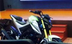 Yamaha MT-15 (3)